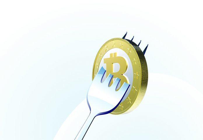 Bitcoin fork przewodnik